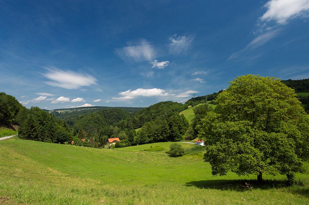 Bayerischer Wald Ferienhaus auf dem Land